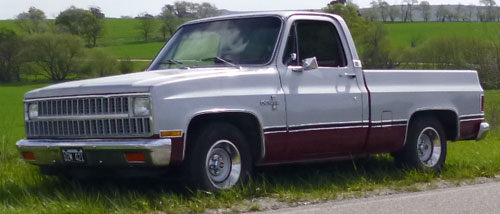 Chevrolet Cheyenne 1982 Photo - 1