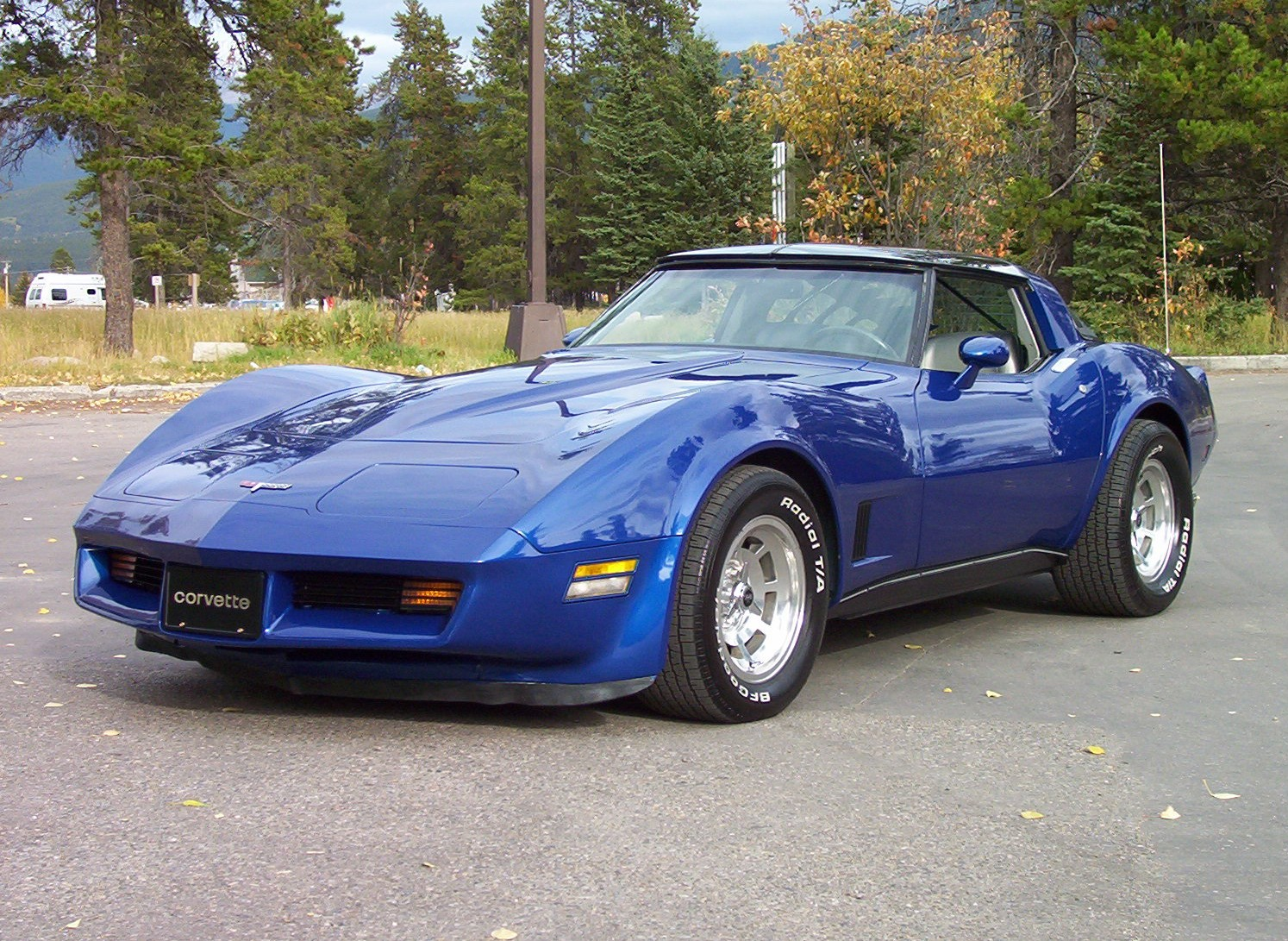 Chevrolet Corvette 1981 Photo - 1