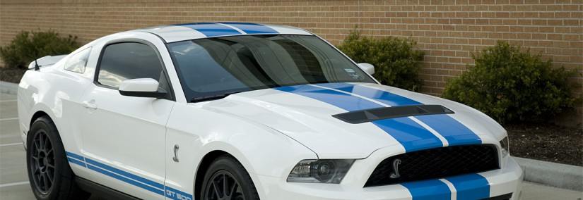 Ford Shelby 2010 Photo - 1