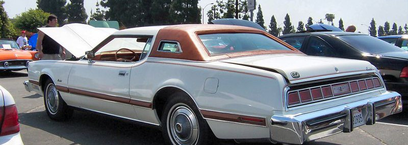 Ford Thunderbird 1975 Photo - 1