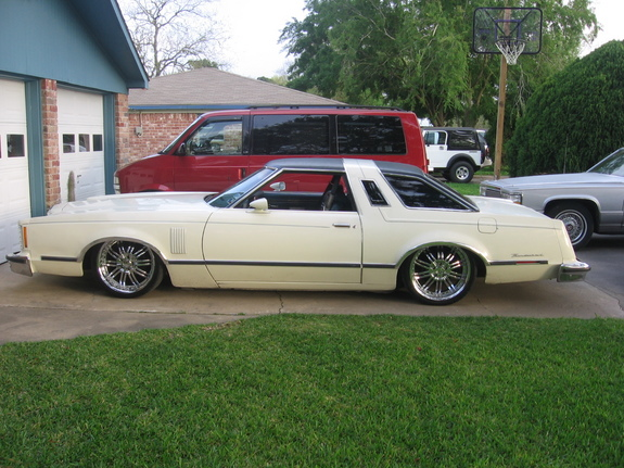 Ford Thunderbird 1979 Photo - 1