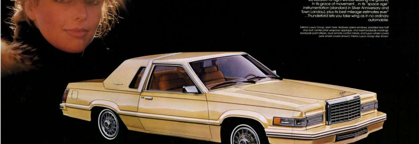 Ford Thunderbird 1980 Photo - 1