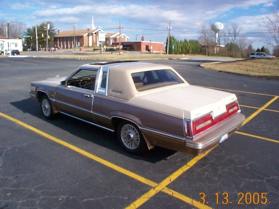 Ford Thunderbird 1981 Photo - 1