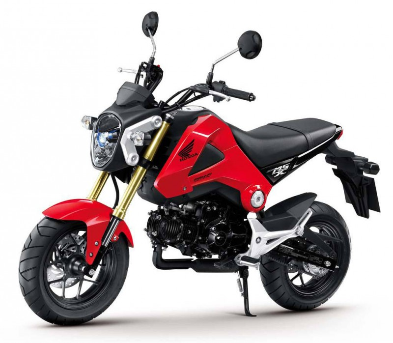 Honda Ruckus 2014 Review Amazing Pictures And Images Look At The Car