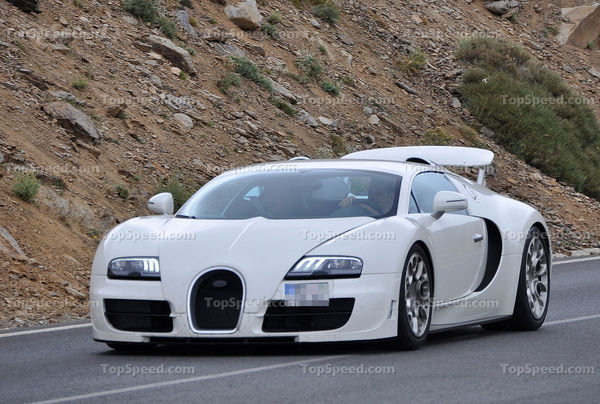Bugatti Veyron 2014 photo - 1