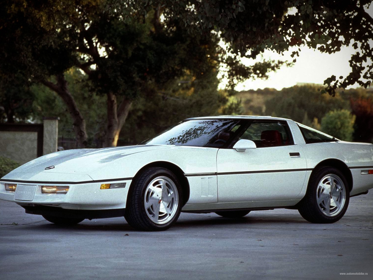 Chevrolet corvette 1983 photo - 6