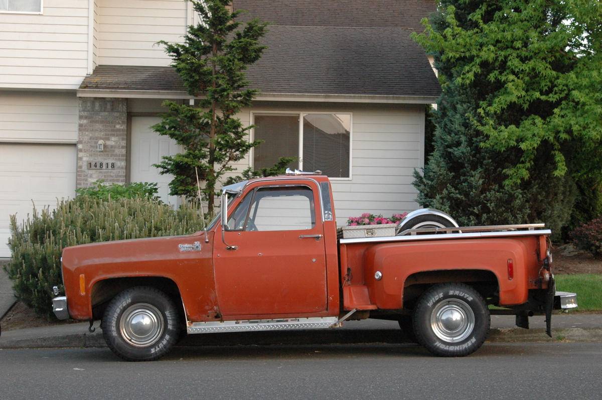 Chevrolet pickup 1978 photo - 6