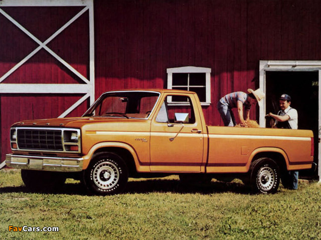 Ford f-150 1980 photo - 4