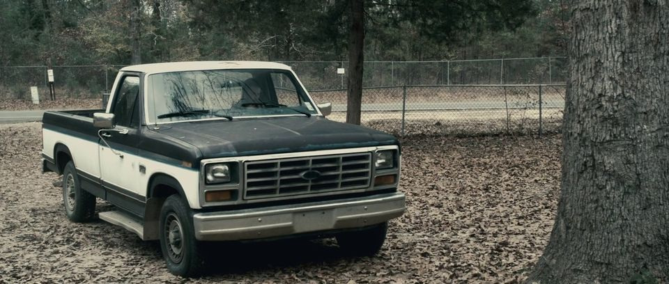 Ford f-150 1982 photo - 8