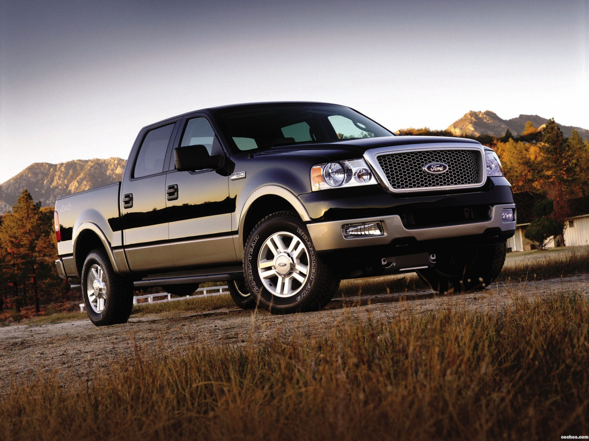 Ford F-150 2004 photo - 4