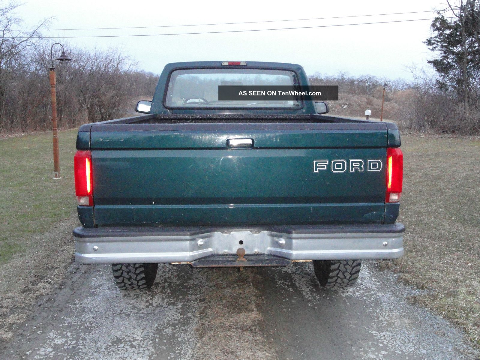 Ford f-250 1994 photo - 4