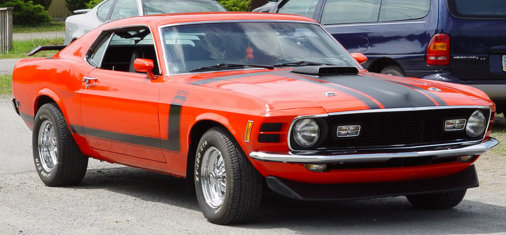 Ford Mustang 1970 photo - 2