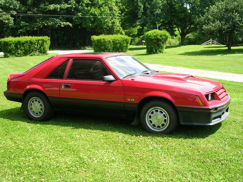 Ford Mustang 1982 photo - 6