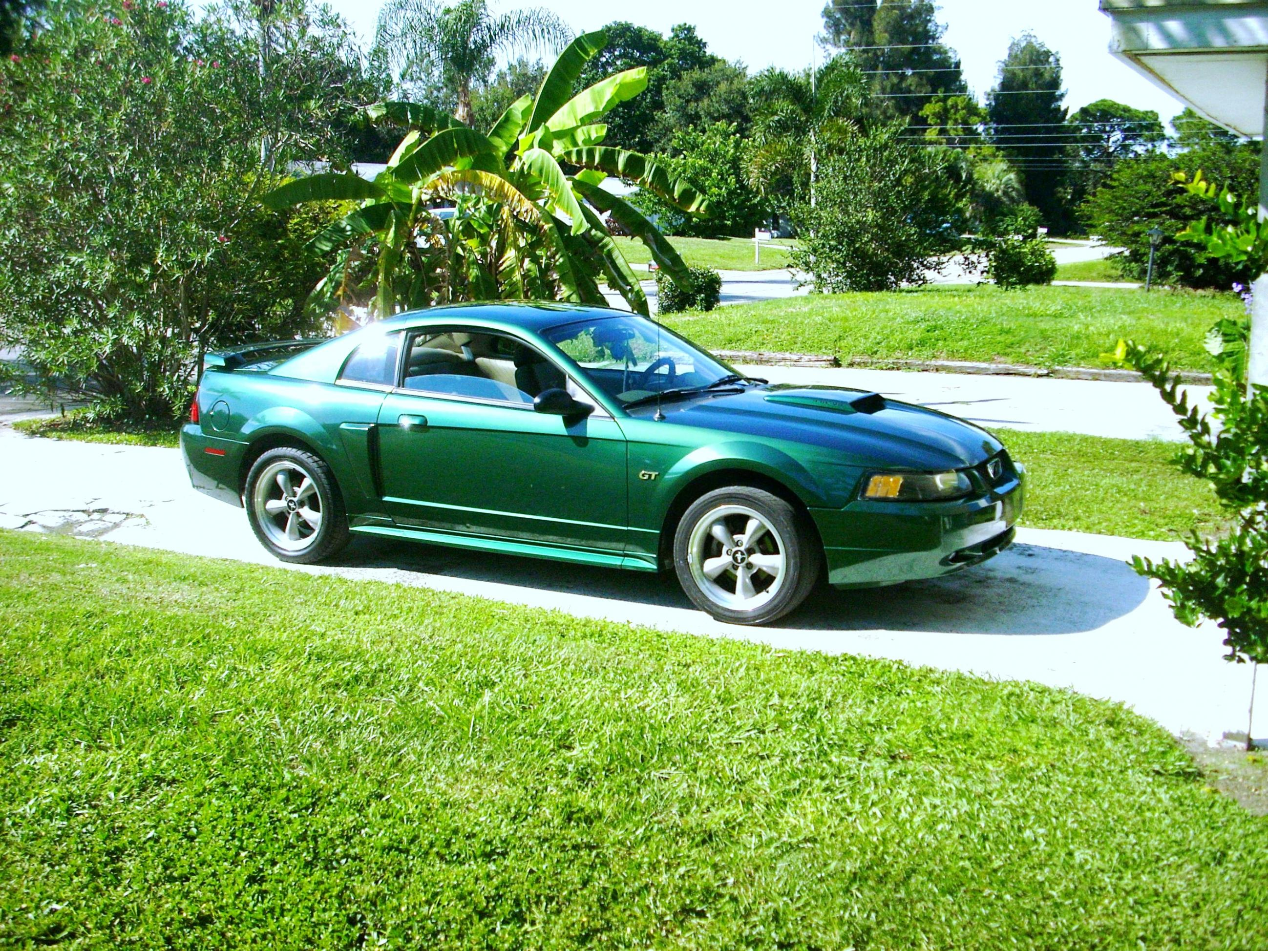 Ford Mustang 2001 photo - 5