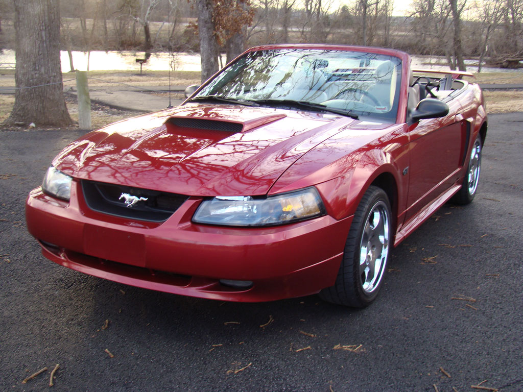 Ford Mustang 2001 photo - 8
