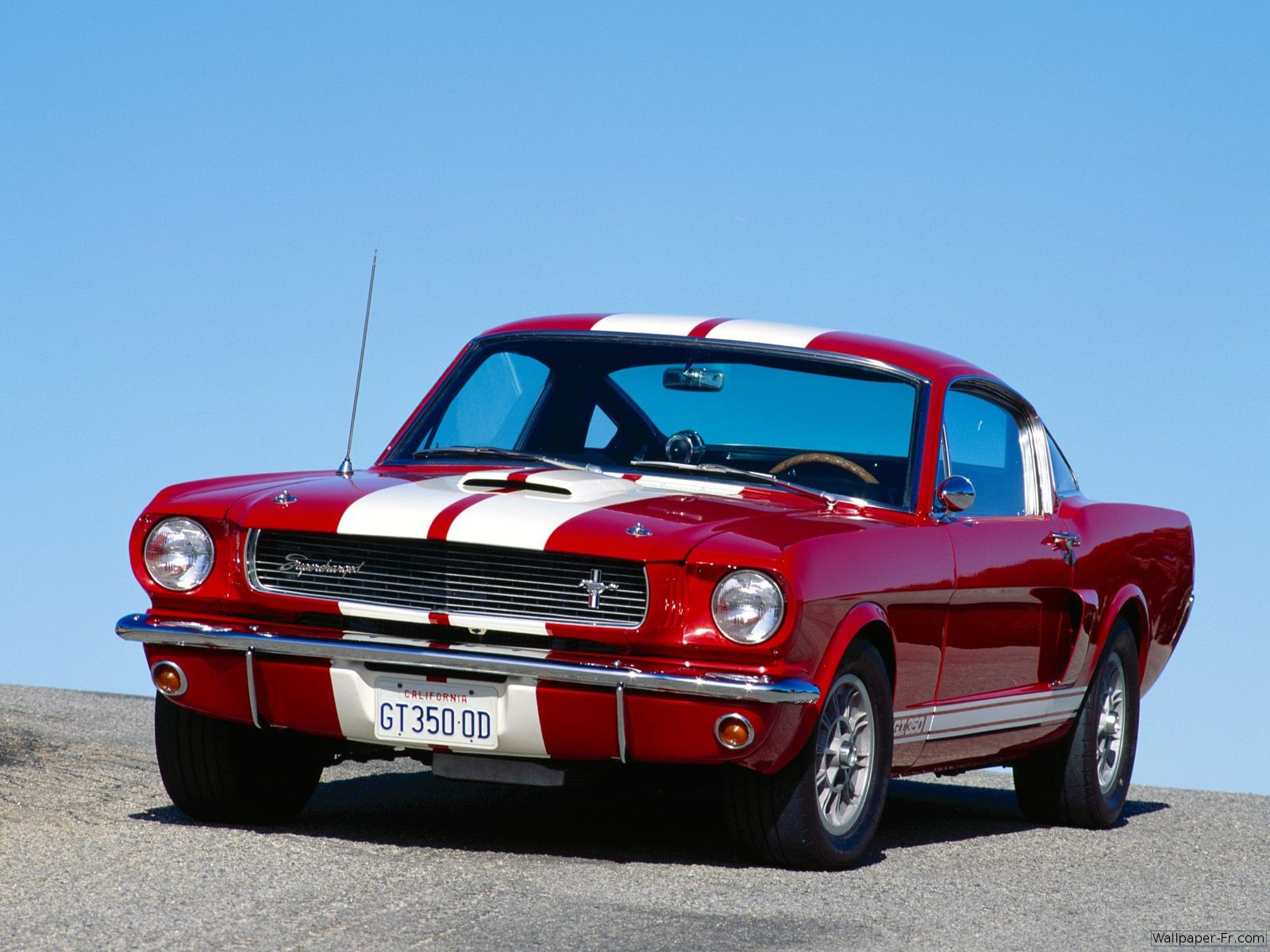 Ford Shelby 1965 photo - 4