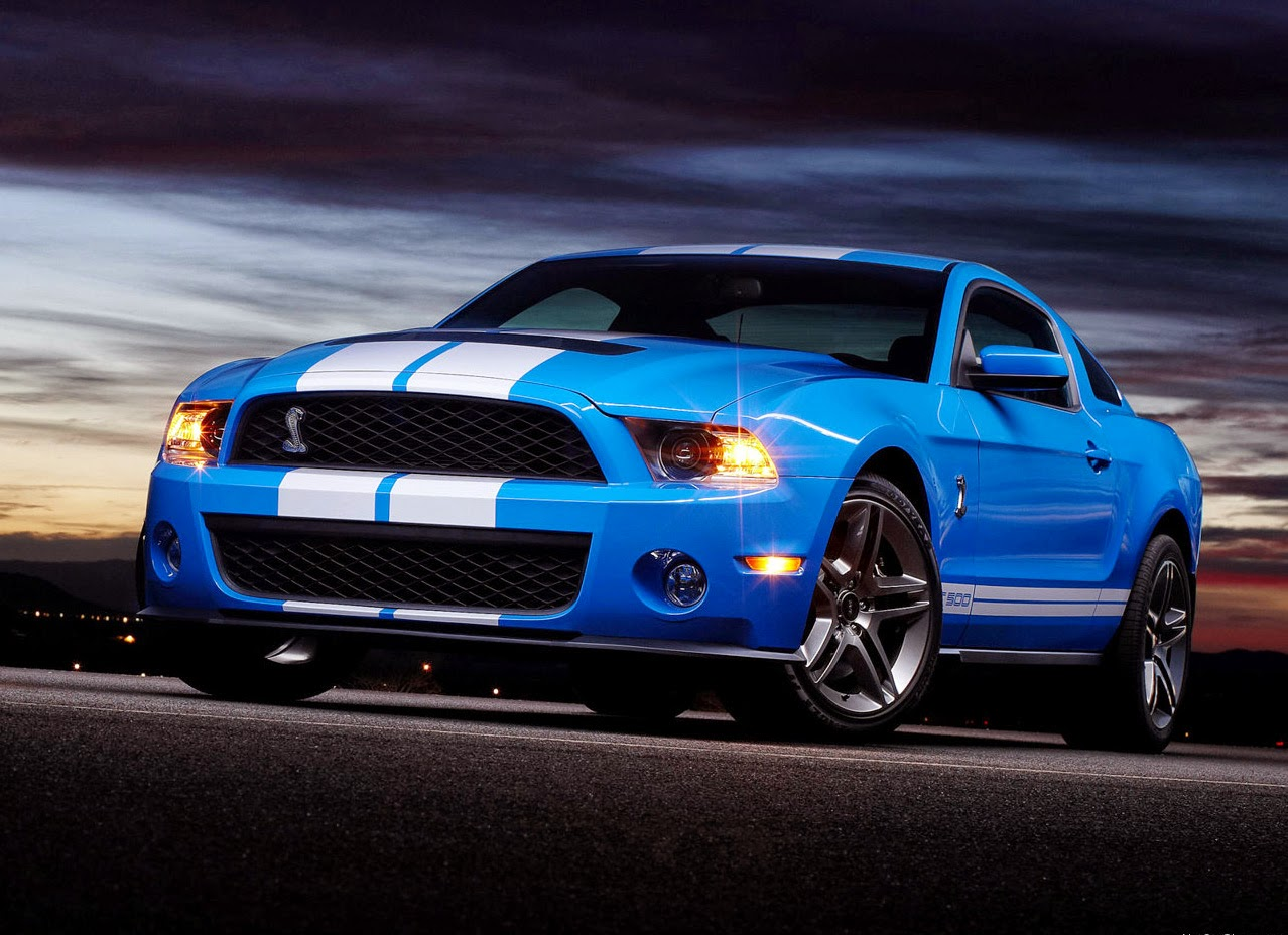 Ford Shelby 2015 photo - 5