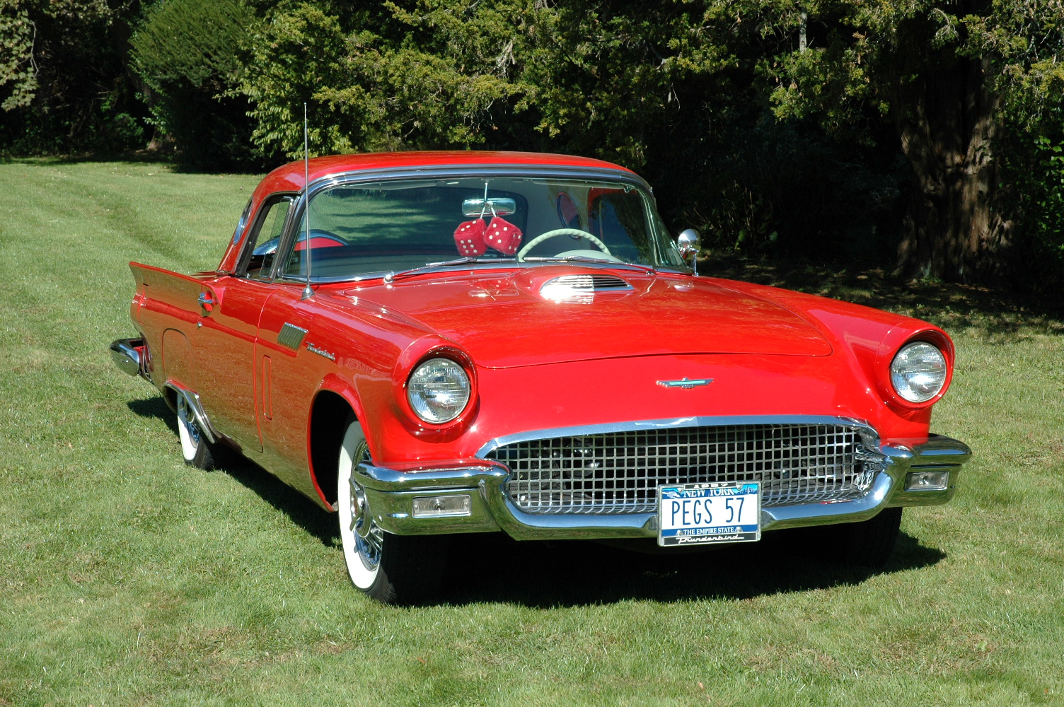 Ford Thunderbird 1954 photo - 1