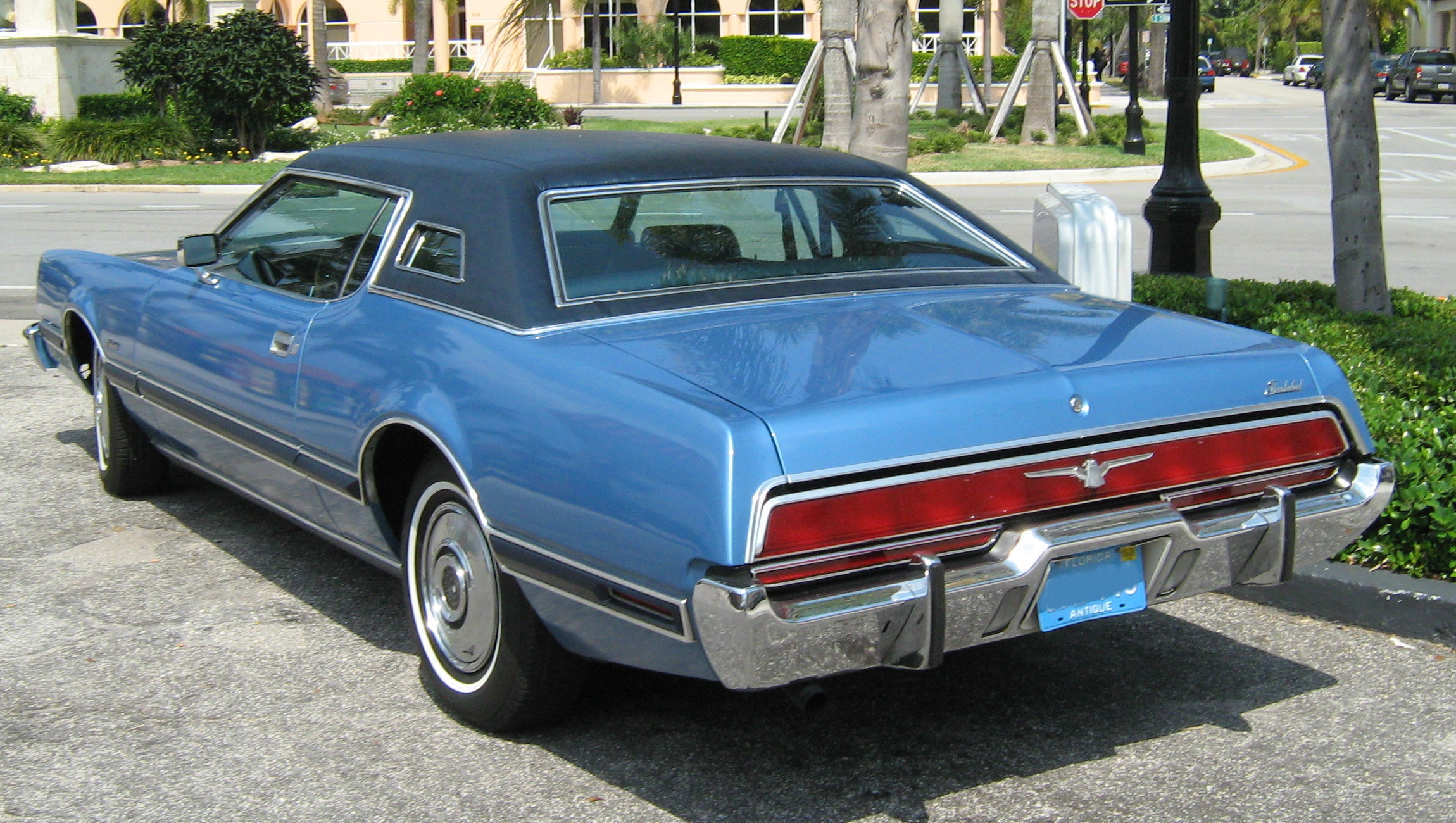 Ford Thunderbird 1973 photo - 2
