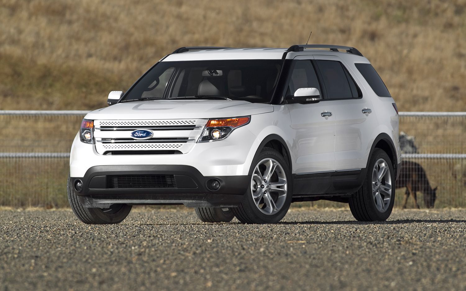Ford XLT 2012 photo - 6