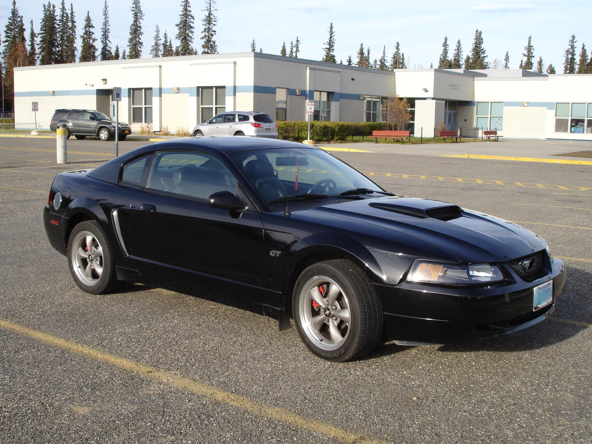 Ford Mustang 2001 photo - 10