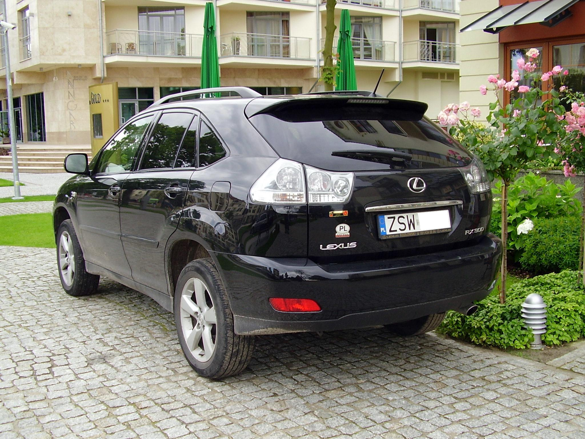 Lexus RX 300 2005: Review, Amazing Pictures and Images – Look at ...